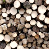 10 Reasons to Heat Your Home with Wood Fuel